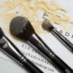 Elaina Badro Brush Review