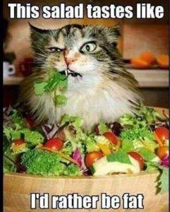 Go to hell, iceberg lettuce.