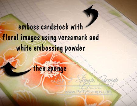 Sar 4 11 cindee sponge
