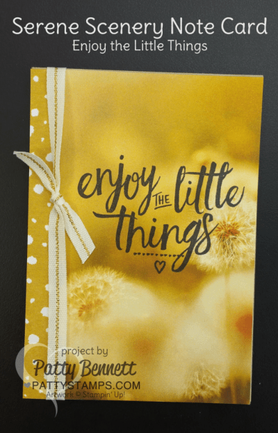 Enjoy the Little Things Serene Scenery Note Cards by Patty Bennett featuring Stampin' UP! paper stack and stamps.  Easy way to make a whole set of note cards - watch the video tutorial to see how to cut your 6x6 paper to maximize use with the Note Cards.