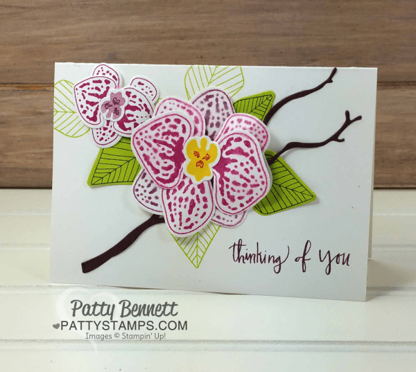 Climbing Orchid stamp set and Orchid Builder bundle card ideas featuring Stampin Up! paper, stamps and ink.  By Patty Bennett