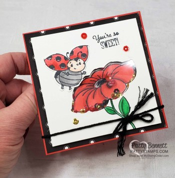 Limited Time Only Ladybug Dies