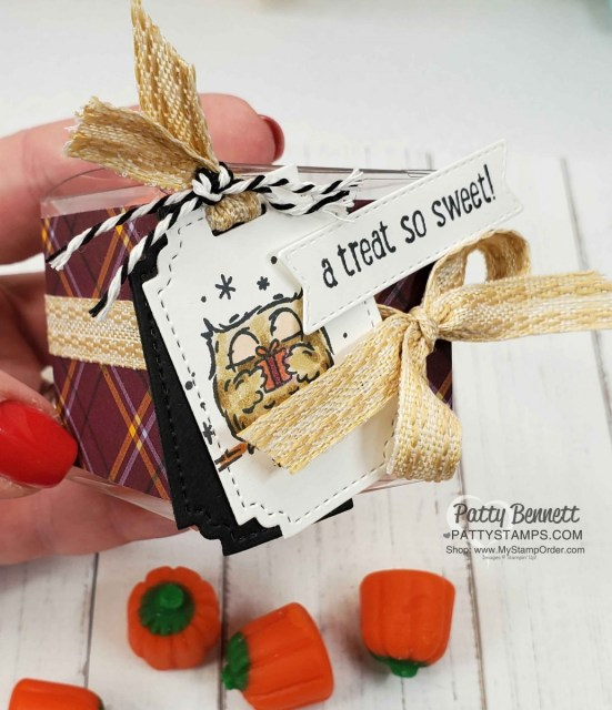 Halloween Treat Idea: Stampin' UP! Have a Hoot bundle owls colored with Stampin' Blends. Clear Square Treat box. www.PattyStamps.com