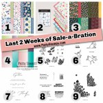 Sale-a-Bration Jan-Feb 2021 2 weeks left for free stamp and papercrafting gifts with Stampin