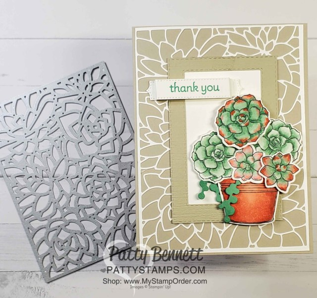 Simply Succulents stamp set image colored with Stampin' Blends markers. Potted Succulents die card background. by Patty Bennett www.PattyStamps.com