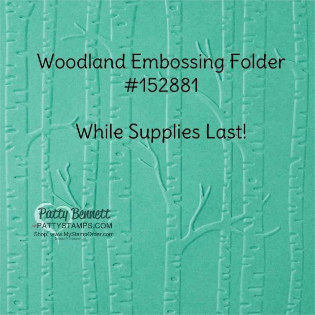 Woodland Embossing Folder #152881 Stampin UP! retiring list www.PattyStamps.com