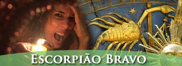 Escorpião louco