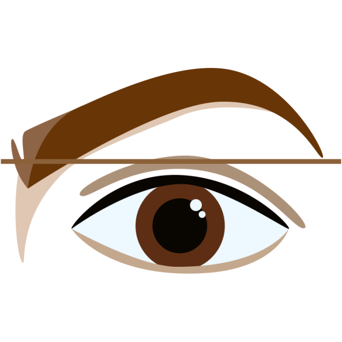 how you can Shape Your Brows in the home