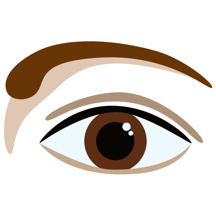 the best way to Shape Your Brows in your house