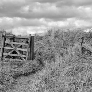 Broken gate in dunes, Beadnell