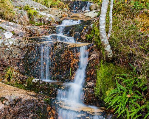 Falls but the falls