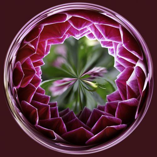 Purple flower PSC011