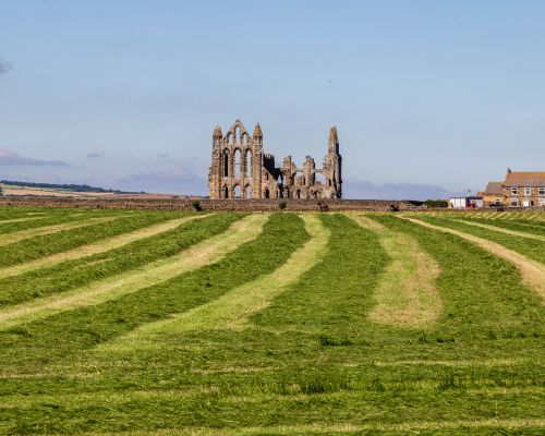 Looking towards Whitby Abbey