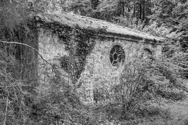 A shed in the garden