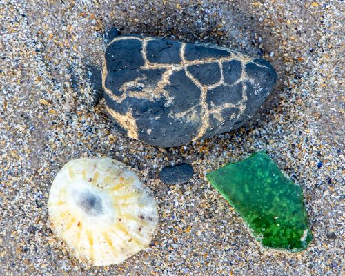 Shell Rock and glass