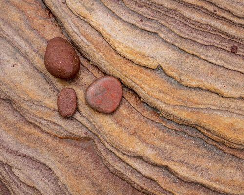 3 brown pebbles