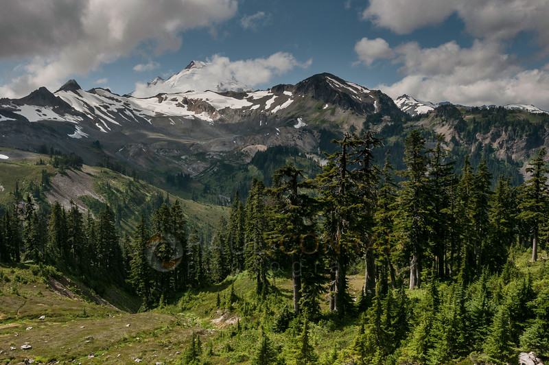 © Paul Conrad/Pablo Conrad Photography - Coleman Pinnacle, left, Mt. Baker in clouds, and a few other peaks looking west from the trail.