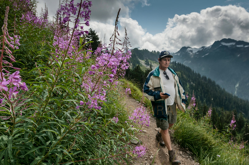 © Paul Conrad/Pablo Conrad Photography - Kurt passes a patch of fireweed as we approach Ptarmigan Ridge.