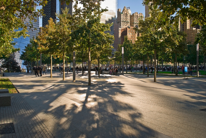 Image result for Paul Cowie: The 9/11 Memorial Tree Project