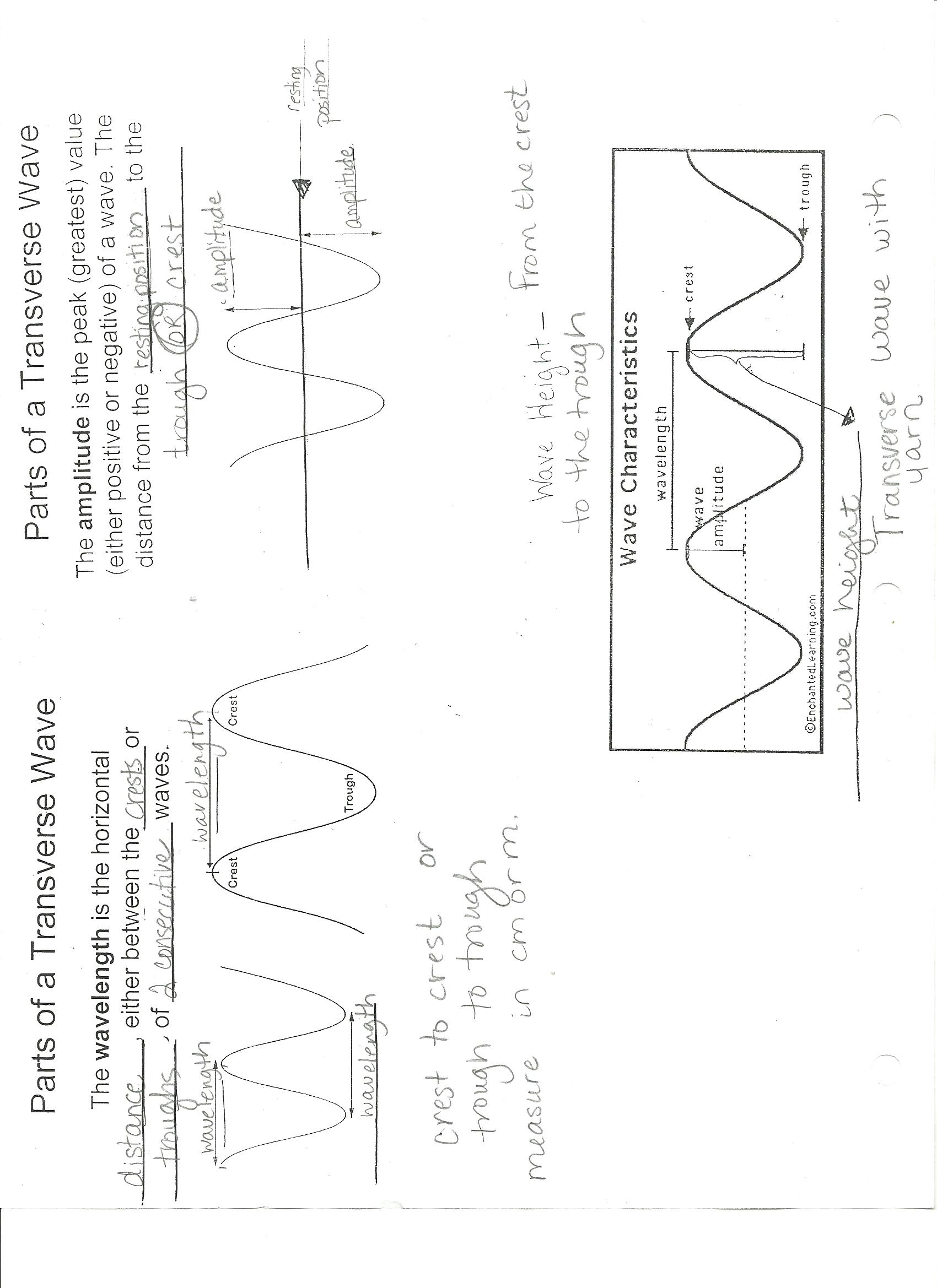 Worksheet Properties Of Waves Worksheet Grass Fedjp Worksheet Study Site