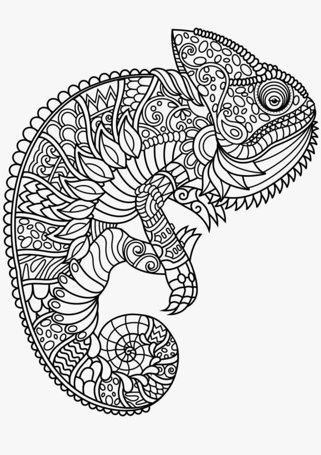 The 8 Best Colouring Pages for Kids for Long Days at home - Paul