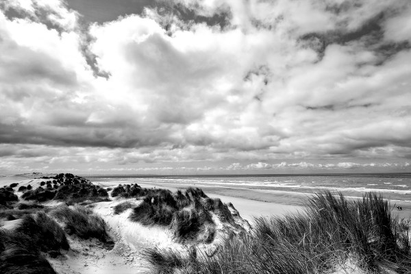 Black and White fine art print of the dunes at Formby Point. Coastal Landscapes Black and White
