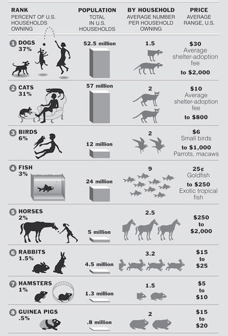 Price Tag of the Top Ten Pets [infographic]