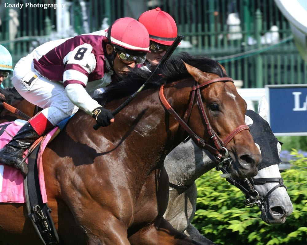 Five Grade 1 Winners To Line Up For G2 Fort Lauderdale