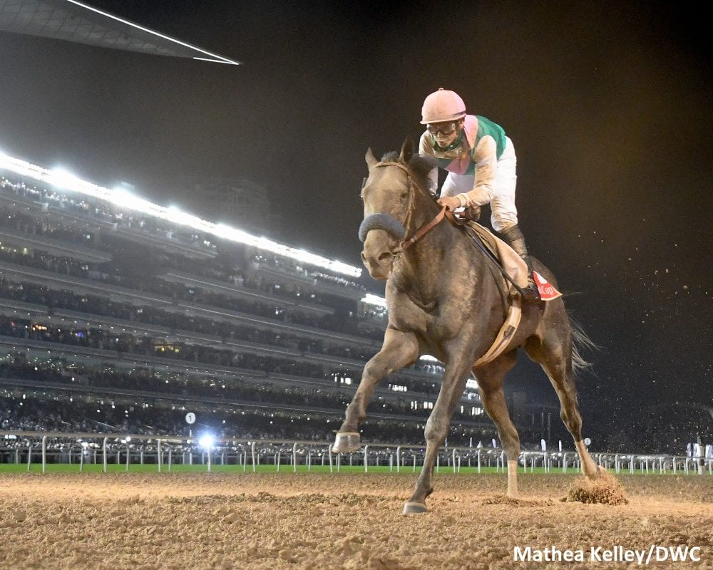 Arrogate dominates the Dubai World Cup