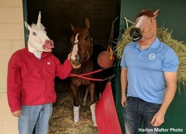 Breeders Cup Countdown Presented By Drf Bets A Million