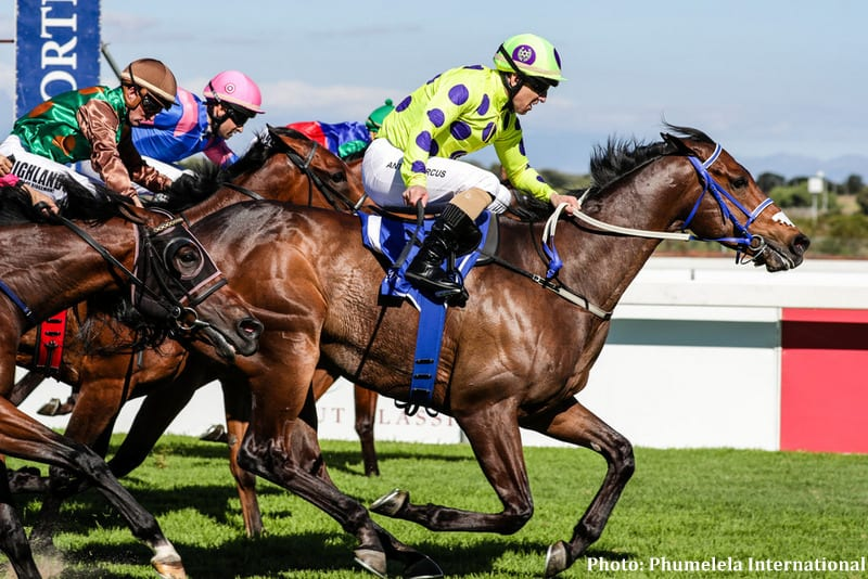 South Africa S Legal Eagle Seeks Historical Win Ahead Of