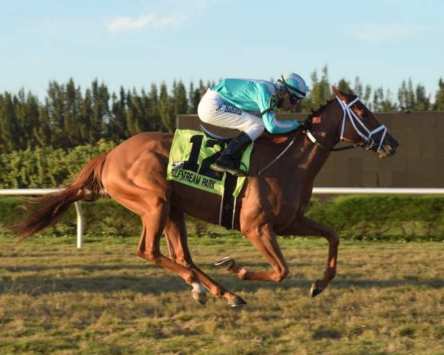 South Florida Racing Moves To Gulfstream Park West For ...