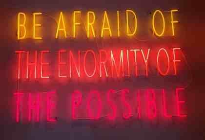 Be Afraid of the Enormity of the Possible by Alfredo Jarr