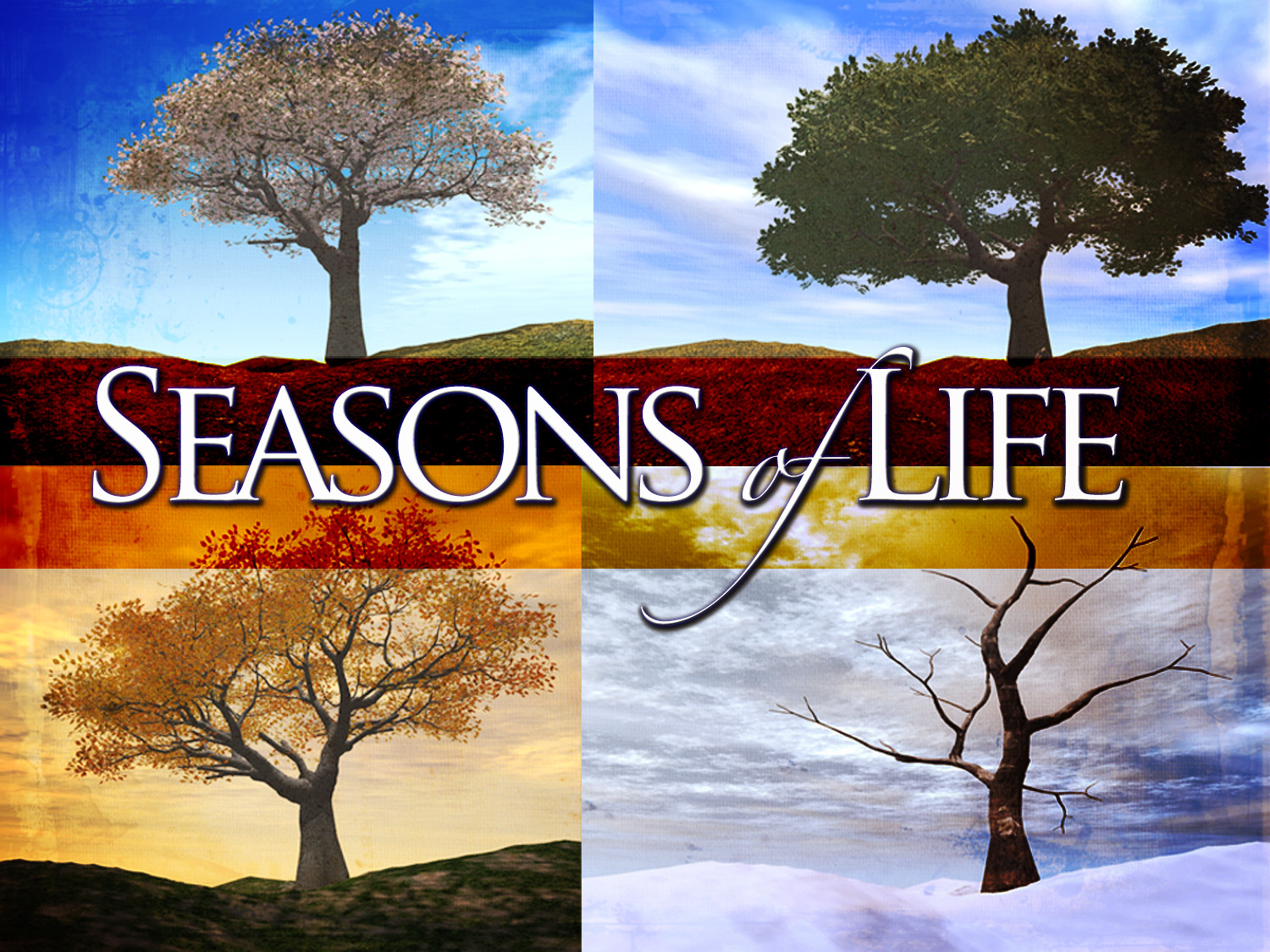 "seasons of life ""seasons change, friends move away, and life goes on from day to day flowers fade and streams go dry and many times we wonder why yet we can always be assured because god tells us in his word, that unlike changes in the weather, love goes on and las."