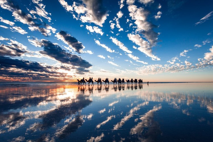 blue camels cable beach broome