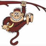 Macaco-min
