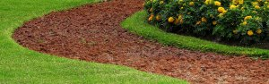 5 Reasons to Rely on Professional Landscape Design