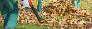 3 Tips For Preparing Your Lawn For Fall