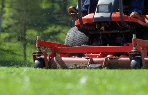 3 Reasons to Hire a Lawn Cutting Service