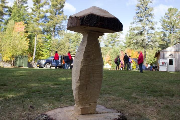 Fungi Stump