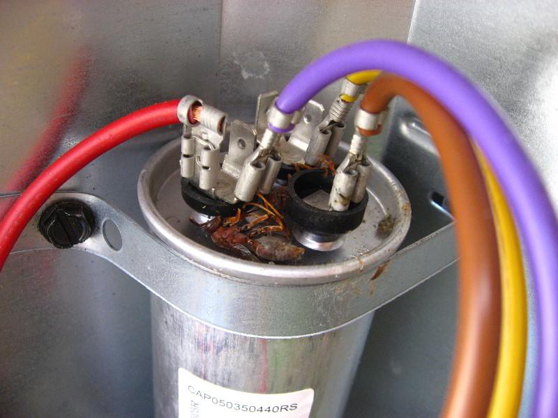 Goodman HVAC Condenser Dual Run Capacitor Replacement Guide 016?resize=665%2C499 goodman ac capacitor wiring diagram wiring diagram,Hvac Dual Capacitor Wiring Diagram