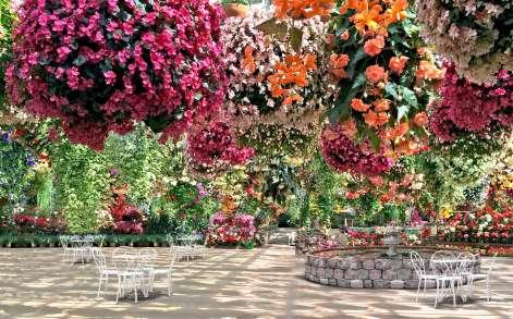 De Orchideëen Hoeve breidt park uit met zwevende bloementuin