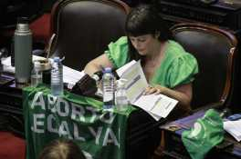 Diputada Carolina Gaillard. Foto: Victoria Campana