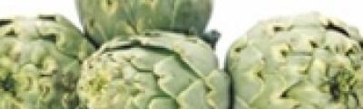 anghinare de Laon