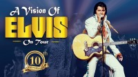 A Vision of Elvis