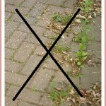 Block paving sand with inbuilt weed killer is now available to buy to stop moss & weeds growing on your paving