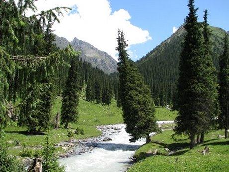 Treking wgórach Tien Shan (Kirgistan) 32
