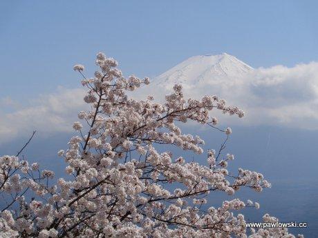 Japonia - Kawaguchiko z widokiem na Fudżi