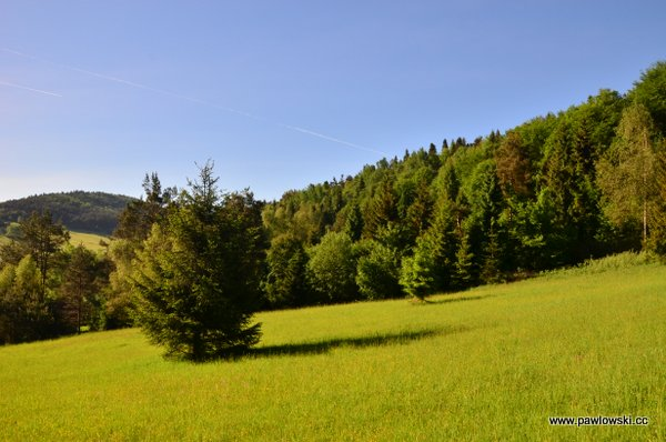 Główny Szlak Beskidzki; Mochnaczka Niżna - Bacówka PTTK wBartnem 8