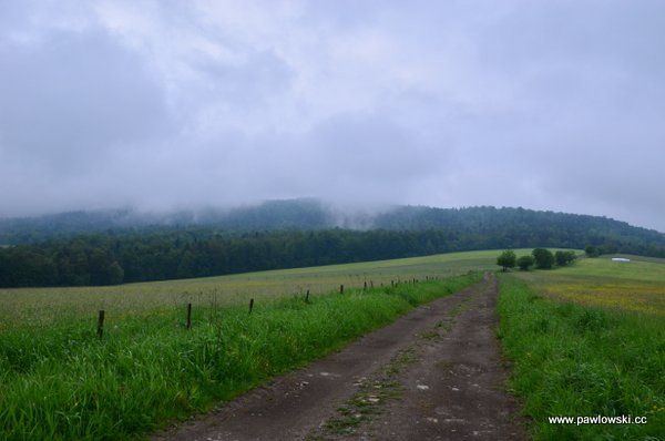 Główny Szlak Beskidzki; Puławy Górne - Prełuki 9